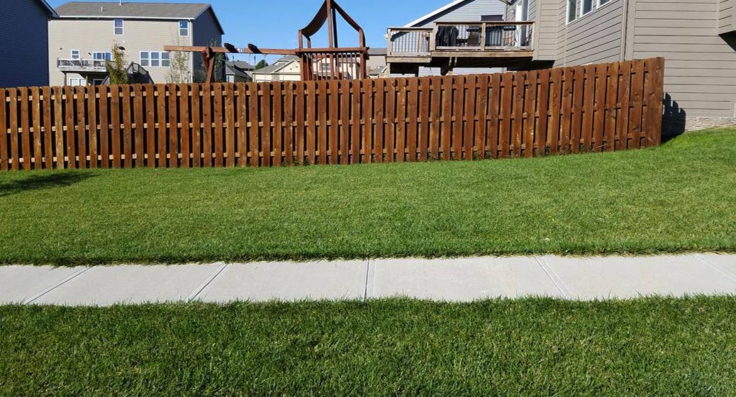 Fence Staining Bennington NE