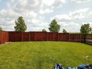 Fence Staining After